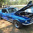 Steve's Mustang